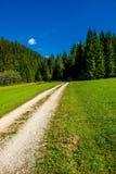 Εγκαταλειμμένος δρόμος αμμοχάλικου μέσω της δασικός-καλυμμένης κοιλάδας στην Αυστρία Στοκ φωτογραφία με δικαίωμα ελεύθερης χρήσης