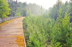 Εγκαταλειμμένος σιδηροδρομικός σταθμός Στοκ εικόνα με δικαίωμα ελεύθερης χρήσης