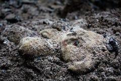 Εγκαταλειμμένος teddy αντέχει το παιχνίδι στο ρύπο Στοκ φωτογραφία με δικαίωμα ελεύθερης χρήσης