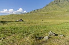 Εγκαταλειμμένο βοοειδές-αγρόκτημα Βουνά Altai, Ρωσία στοκ εικόνες