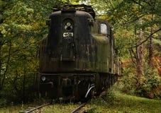 Εγκαταλειμμένο τραίνο στο κράτος της Νέας Υόρκης Στοκ Φωτογραφία