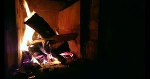 Εγκαύματα καυσόξυλου firebox απόθεμα βίντεο