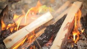 Εγκαύματα πυρκαγιάς τουριστών φιλμ μικρού μήκους