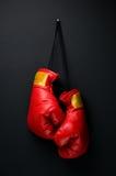 Εγκιβωτίζοντας γάντια Στοκ Εικόνα