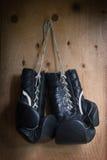 εγκιβωτίζοντας γάντια Στοκ φωτογραφίες με δικαίωμα ελεύθερης χρήσης