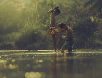 εγκιβωτίζοντας Ταϊλανδός Στοκ Εικόνες