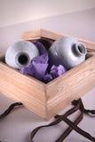 εγκιβωτισμένα vases Στοκ φωτογραφίες με δικαίωμα ελεύθερης χρήσης