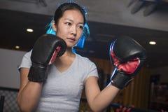 Εγκιβωτισμός γυναικών στη γυμναστική Στοκ Φωτογραφία