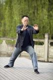Εγκιβωτισμός taiji παιχνιδιού ατόμων Στοκ Εικόνα