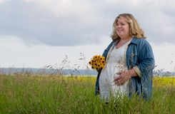 εγκυμοσύνη Στοκ φωτογραφία με δικαίωμα ελεύθερης χρήσης