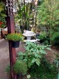 Εγχώριος κήπος στοκ εικόνα με δικαίωμα ελεύθερης χρήσης