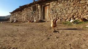 Εγχώριο χωριό της Τουρκίας απόθεμα βίντεο