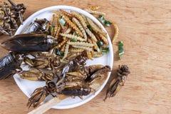 Εδώδιμα έντομα σκουληκιών μπαμπού τριζάτα και γρύλοι σε έναν ξύλινο πίνακα Η έννοια των πρωτεϊνικών πηγών τροφίμων από τα έντομα  στοκ εικόνα