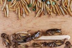 Εδώδιμα έντομα σκουληκιών μπαμπού τριζάτα και γρύλοι σε έναν ξύλινο πίνακα Η έννοια των πρωτεϊνικών πηγών τροφίμων από τα έντομα  στοκ εικόνα με δικαίωμα ελεύθερης χρήσης