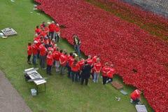 Εθελοντές που εγκαθιστούν τον πύργο παπαρουνών του Λονδίνου Στοκ φωτογραφία με δικαίωμα ελεύθερης χρήσης