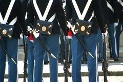 εθιμοτυπική στενή φρουρά επάνω στοκ φωτογραφία με δικαίωμα ελεύθερης χρήσης