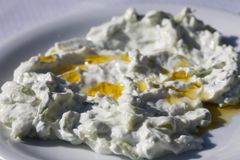 Εθνικά ελληνικά τρόφιμα - tzatziki που εξυπηρετείται σε ένα άσπρο πιάτο στοκ εικόνες με δικαίωμα ελεύθερης χρήσης