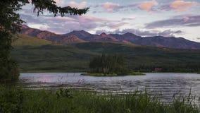 Εθνικές πάρκο και κονσέρβα της Αλάσκας Denali απόθεμα βίντεο