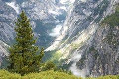 Εθνικές σειρές βουνών πάρκων Yosemite, Καλιφόρνια, ΗΠΑ Στοκ Εικόνα
