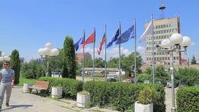Εθνικές σημαίες βιβλιοθηκών απόθεμα βίντεο