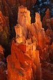 Εθνική ανατολή πάρκων φαραγγιών του Bryce Στοκ εικόνα με δικαίωμα ελεύθερης χρήσης