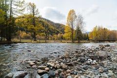 εθνική επιφύλαξη βουνών τοπίων της Κριμαίας φθινοπώρου karadag Ποταμός βουνών στα πλαίσια των κιτρινισμένων δέντρων Στοκ Φωτογραφίες