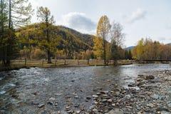 εθνική επιφύλαξη βουνών τοπίων της Κριμαίας φθινοπώρου karadag Ποταμός βουνών στα πλαίσια των κιτρινισμένων δέντρων Στοκ εικόνες με δικαίωμα ελεύθερης χρήσης