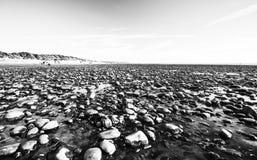 Εθνική επιφύλαξη φύσης Ynyslas στοκ φωτογραφία με δικαίωμα ελεύθερης χρήσης