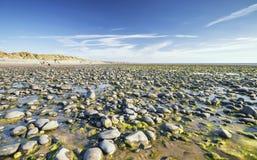 Εθνική επιφύλαξη φύσης Ynyslas στην Ουαλία στοκ φωτογραφία με δικαίωμα ελεύθερης χρήσης