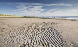 Εθνική επιφύλαξη φύσης Ynyslas στην Ουαλία στοκ φωτογραφία