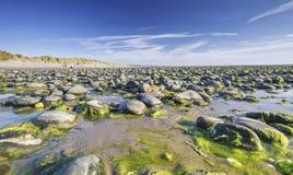 Εθνική επιφύλαξη φύσης Ynyslas στη βόρεια Ουαλία στοκ φωτογραφίες