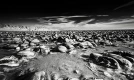 Εθνική επιφύλαξη φύσης Ynyslas στη βόρεια Ουαλία στοκ φωτογραφία