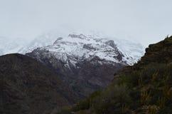 Εθνική επιφύλαξη Blanco RÃo, κεντρική Χιλή, μια υψηλή κοιλάδα βιοποικιλότητας στο Los Άνδεις στοκ εικόνα με δικαίωμα ελεύθερης χρήσης