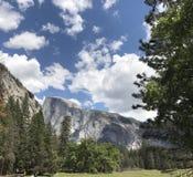 Εθνική θέα βουνού EL Capitan πάρκων Yosemite από την κοιλάδα στοκ φωτογραφία με δικαίωμα ελεύθερης χρήσης