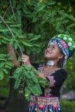 Εθνική μειονότητα Hmong στο Λάος στοκ εικόνα με δικαίωμα ελεύθερης χρήσης