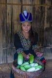 Εθνική μειονότητα Hmong στο Λάος στοκ εικόνες