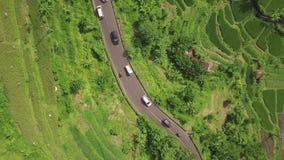 Εθνική οδός αυτοκινήτων και τομέας ρυζιού που πετά άνωθεν τον κηφήνα Εναέρια φυτεία ρυζιού άποψης πράσινη μέσα στο ασιατικό χωριό απόθεμα βίντεο