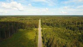 Εθνική οδός μεταξύ του δάσους Στοκ Εικόνα
