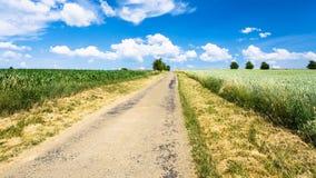 εθνική οδός μεταξύ των τομέων δημητριακών Picardy Στοκ φωτογραφία με δικαίωμα ελεύθερης χρήσης