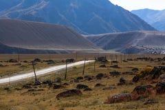 Εθνική οδός Chuya στα βουνά Altai, Δημοκρατία Altai Στοκ Εικόνα