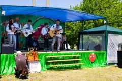 Εθνική ουκρανική μουσική ομάδα στις εθνικές πράξεις κοστουμιών σε Stra Στοκ εικόνες με δικαίωμα ελεύθερης χρήσης