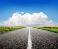 Εθνική οδός και ηλίανθοι Στοκ Εικόνες