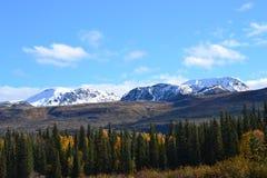 Εθνική οδός πάρκων του George της Αλάσκας 2 στοκ εικόνες