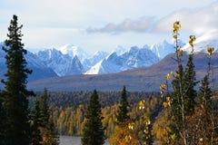 Εθνική οδός πάρκων του George της Αλάσκας 3 στοκ εικόνα με δικαίωμα ελεύθερης χρήσης