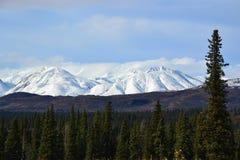 Εθνική οδός πάρκων του George της Αλάσκας 4 στοκ φωτογραφία με δικαίωμα ελεύθερης χρήσης