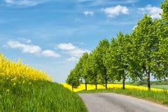 Εθνική οδός σε δυτικό Pomerania, Γερμανία Στοκ φωτογραφίες με δικαίωμα ελεύθερης χρήσης