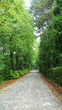 Εθνική οδός στην Ιταλία Στοκ Εικόνα