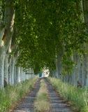 Εθνική οδός στην Προβηγκία Στοκ εικόνα με δικαίωμα ελεύθερης χρήσης