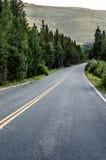 Εθνική οδός του Κολοράντο που ευθυγραμμίζεται με τα δέντρα Στοκ Φωτογραφία