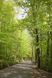 εθνική οδός Στοκ εικόνα με δικαίωμα ελεύθερης χρήσης